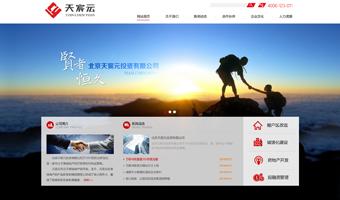 天宸元集团官网建设